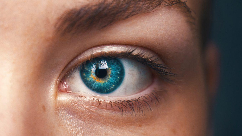 iris-bleue